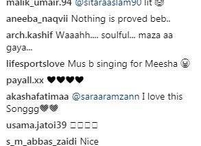 ali zafar, meesha shafi