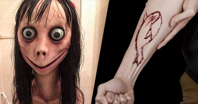 Momo Challenge Update: Momo Suicide Challenge & Blue Whale Banned In Pakistan