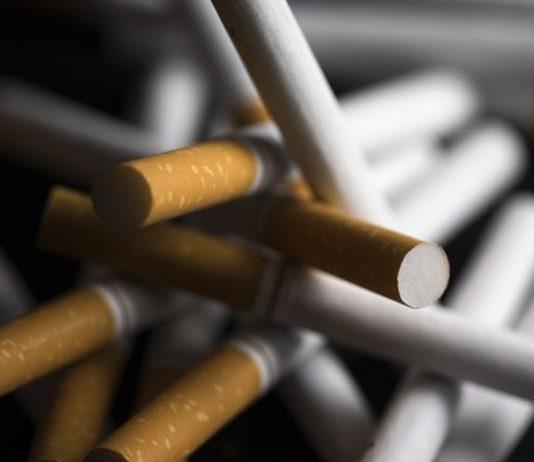 tobacco revenues