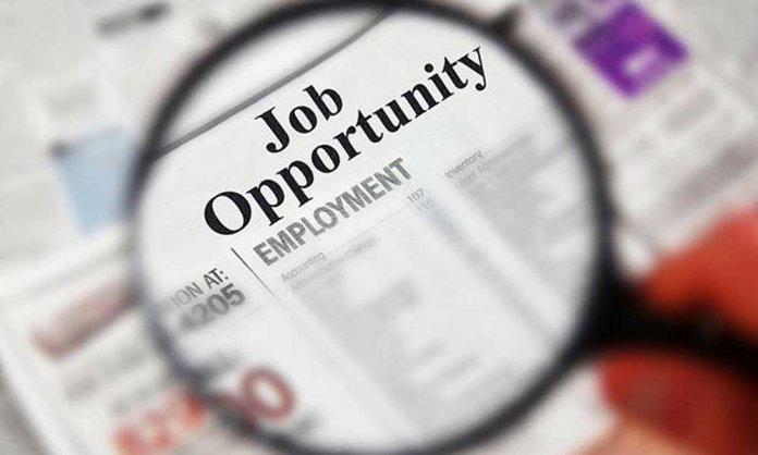 National Job Portal