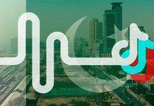 top 10 tiktok stars in pakistan