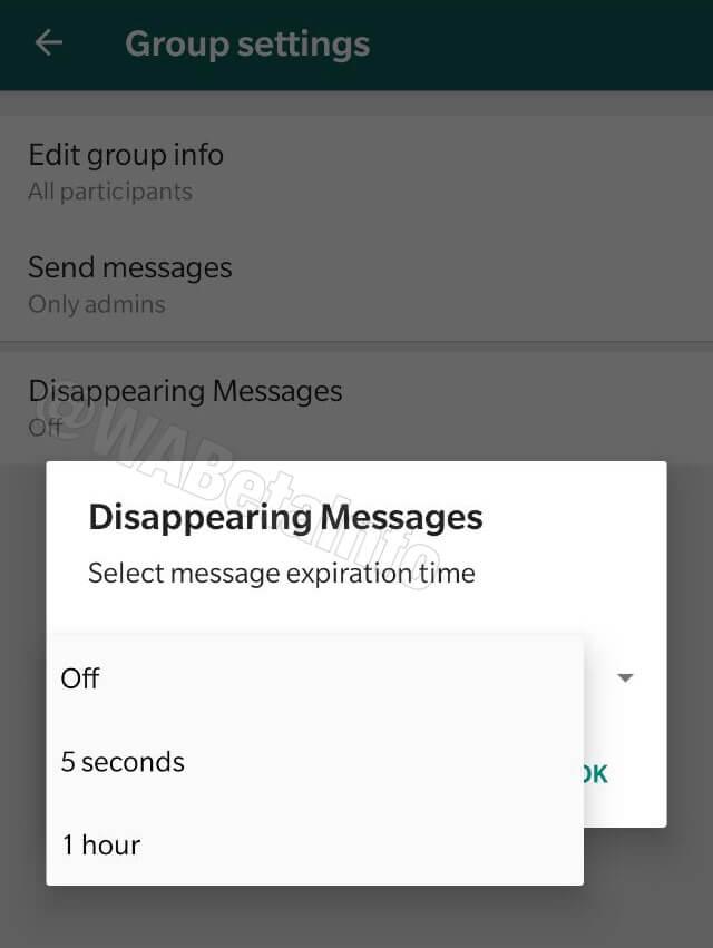 whatsapp self destruct