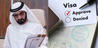 uae multi entry visa