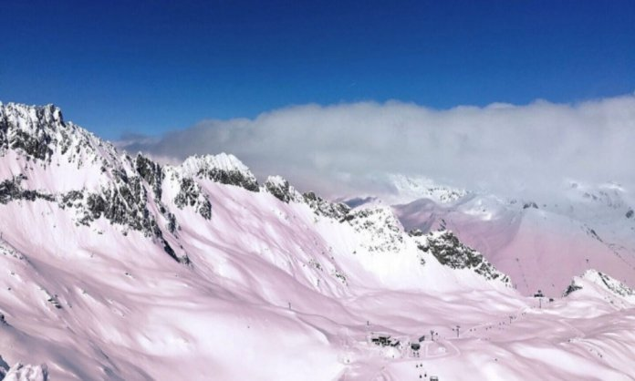 Pink Snow in the Italian Alps