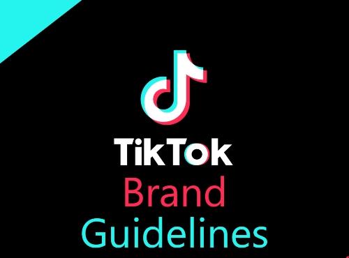 Tiktok guidelines
