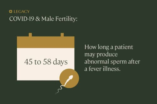 covid-19 sperm count quality