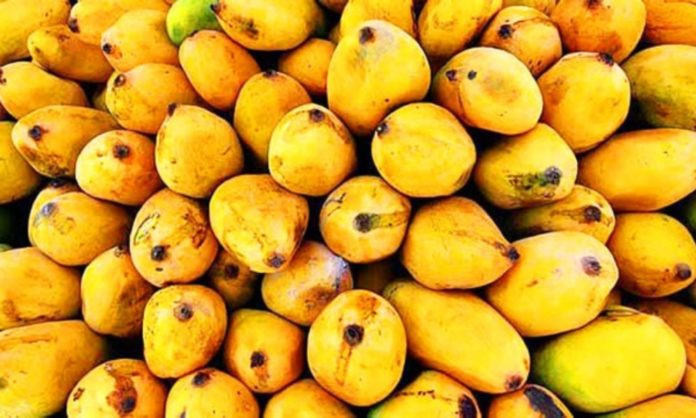 to buy perfect mangoes tips