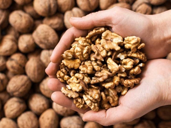 nuts help lose weight