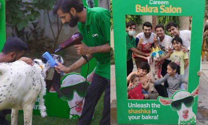 careem pakistan Bakra Salon