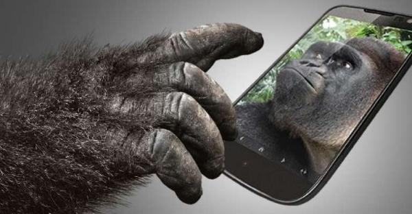 samsung gorilla glass cameras
