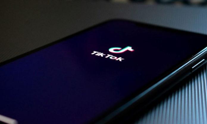 tiktok new api for brands and creators
