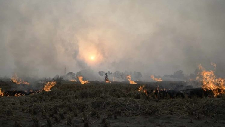 crop-burning-is-the-real-reason-for-lahore-smog-2