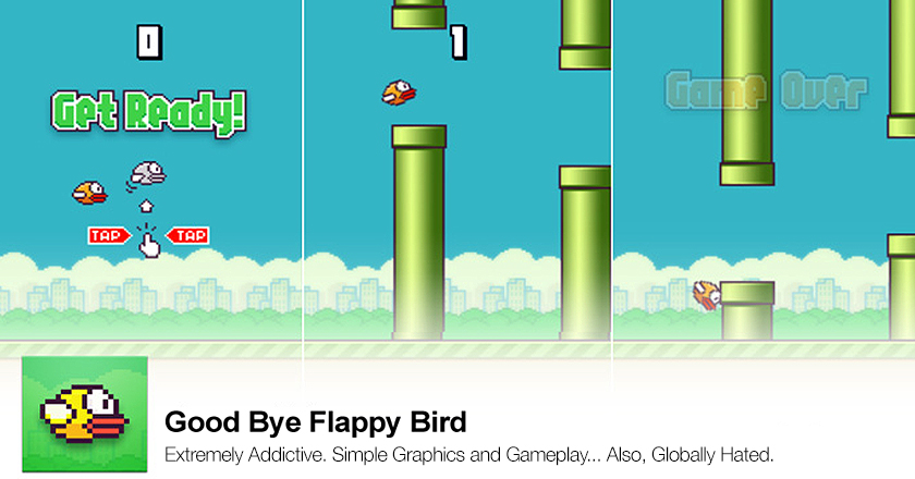GoodBye Flappy Bird For Good or For Worse