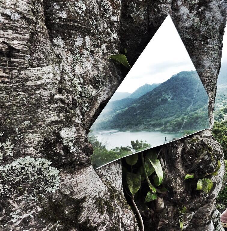mirror-mirror-on-a-tree-by-johara-alatas