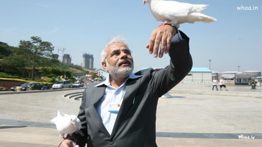 Narendra-Modi-With-White-Pigeon-