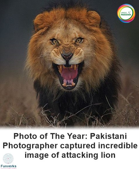 Pakistan 2015 Year in Review (13)