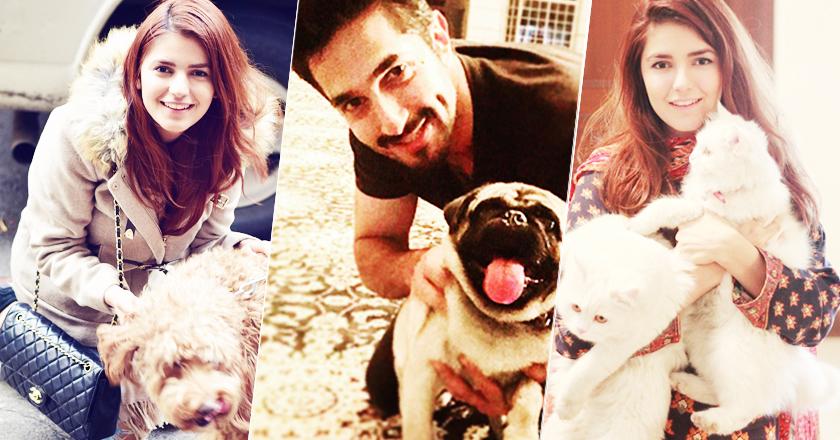 pakistani-celebs-with-pets