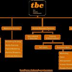 The Brand Consultants TBC