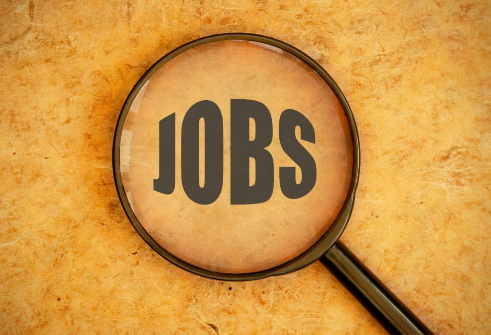 10 Highest Paying Jobs in Pakistan - Brandsynario