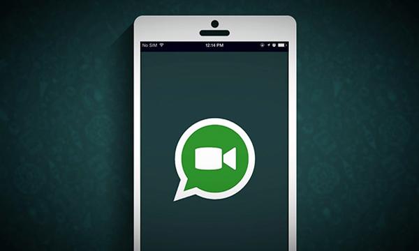 lead-whatsapp-calling