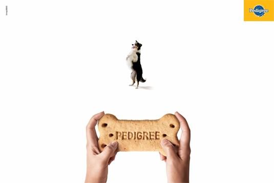 pedigree print ad