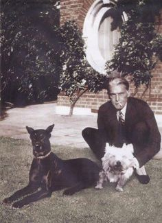 quaid's love for pets